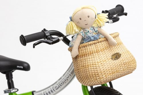 nantucket basket fitted to green bike